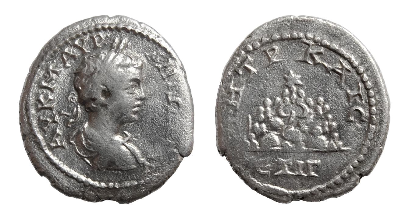 Драхма Каракалла, отчеканенная в Кесарии, Каппадокия, в 204/205 г. н. Э. (13-й год правления Септимия Севера), фот. Piotr Jaworski